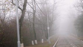 Weg in park in mist Stil de herfstweer Geheimzinnigheid stock footage