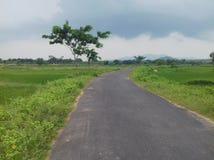Weg in regenseizoen Stock Afbeeldingen
