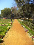 Weg in Rose Garden, New Delhi Stock Fotografie