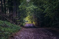 Weg in Slowaaks Paradijs stock fotografie