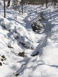Weg in sneeuw stock fotografie