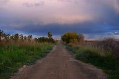 Weg, Sturm, bewölkte Himmel, Einsamkeit, Anlagen, Palmen, Blau, Schotterweg stockfotografie