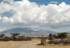 Weg in Tanzania Royalty-vrije Stock Foto