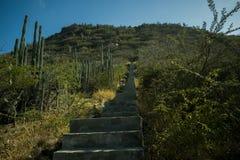 Weg tot de bovenkant van Hooiberg, Aruba Royalty-vrije Stock Foto