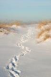 Weg tussen zandduinen in de winter Stock Afbeeldingen