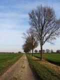 Weg typisch landschap voor Nederland Royalty-vrije Stock Afbeeldingen