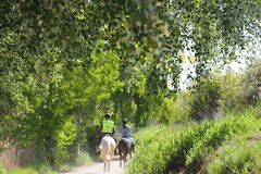 Weg und zwei Leute, die ein Pferd, ivars und Vila Sana, lerida reiten stockbild