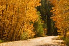 Weg van de herfst stock afbeelding