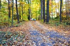 Weg van de Herfst Stock Afbeeldingen