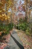 Weg van de herfstgebladerte stock foto