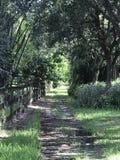 Weg van groen Stock Afbeeldingen