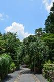 Weg van Japanse tuin van Ryoanji, Kyoto Japan Stock Foto