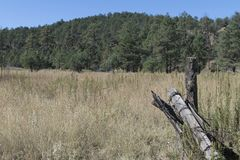 Weg 35 van New Mexico bergweide Royalty-vrije Stock Foto