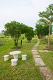 Weg van springplanken die in tuin leiden Royalty-vrije Stock Afbeelding