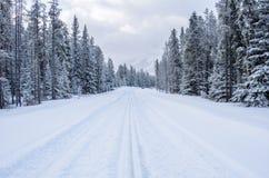 Weg in Verse Sneeuw in de Canadese Rotsachtige Bergen wordt behandeld die royalty-vrije stock foto