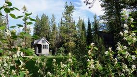 Weg vom kleinen Haus des Gitters in den Bergen Stockbilder