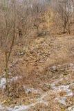 Weg von Granitsteinen und -felsen Stockbild