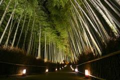 Weg von Laternen in einem Bambuswald für das Nachtbeleuchtungsfestival in Kyoto, Japan Stockfotos