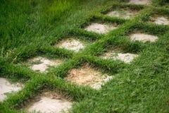Weg von Steinfliesen, gelegt auf den Rasen Lizenzfreies Stockbild