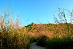 Weg zu Broga-Hügel Stockfotografie