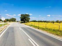 Weg in zuiden van Portugal Stock Foto's