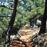 Weg zum Kap Gelidonya Kiefer Gealtertes Foto Lizenzfreie Stockfotos