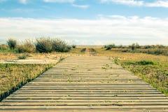 Weg zum Strand Lizenzfreies Stockbild