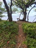 Weg zum Ufer Stockfotografie