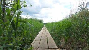 Weg zur Brücke für die Fischerei Stockbild