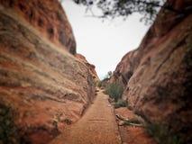 Weg zur Natur Stockbild