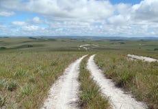 Weg zur Savanne Stockbild