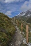 Weg zur Spitze von Hohenburg Stockfoto