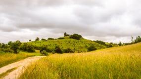 Weg zwischen den französischen Feldern stockfoto