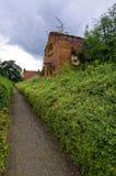 Weg zwischen den grünen Büschen Stockfotografie