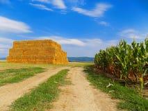 Weg zwischen Feldern und hohem Stapel von Heuballen Lizenzfreies Stockbild