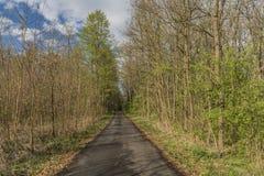 Weg zwischen Städten Hodonin und Ratiskovice stockfotografie