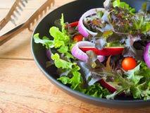 Weganinów warzywa sałatkowi Zdjęcia Stock