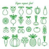 Weganin żywność organiczna Set weganin żywność organiczna Kolekcja Lin Obrazy Stock