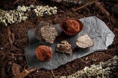 Weganin czekoladowe trufle Fotografia Royalty Free