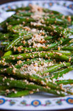 Weganin fasolki szparagowej sałatka Obraz Stock