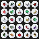 Weganin karmowa ikona ustawiająca na Round tle Obraz Stock
