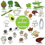 Weganin proteina ilustracji