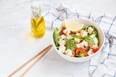 Weganin zdrowa sałatka z papryk warzywami i tofu Obraz Royalty Free