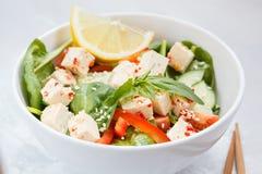 Weganin zdrowa sałatka z papryk warzywami i tofu Zdjęcie Stock