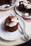 Weganinu czekoladowy tort Zdjęcie Royalty Free