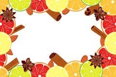 Weganinu dnia colorfull cytrusa plakatowy owocowy tło Zdjęcia Royalty Free
