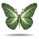 Weganinu symbolu Kale liść ilustracji