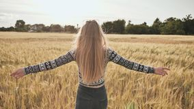 Wege eines dreht sich schöne blonde Mädchenjugendlichen durch ein Weizenfeld herum und lächelt stock footage
