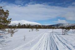 Wege im Schnee stockbild
