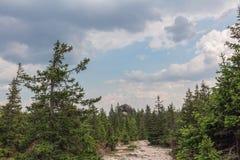 Wege zwischen Wäldern und Bergen der Süd-Urals Sommer in den Bergen Ansicht von den Bergen Die Natur des Sou Lizenzfreies Stockfoto